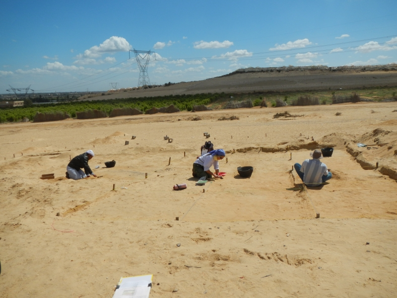 Excavations of Neolithic (5th millennium BC) contexts on the Wadi el-Gamal, western Nile Delta