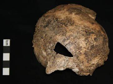 Bone from Bredelem, Germany
